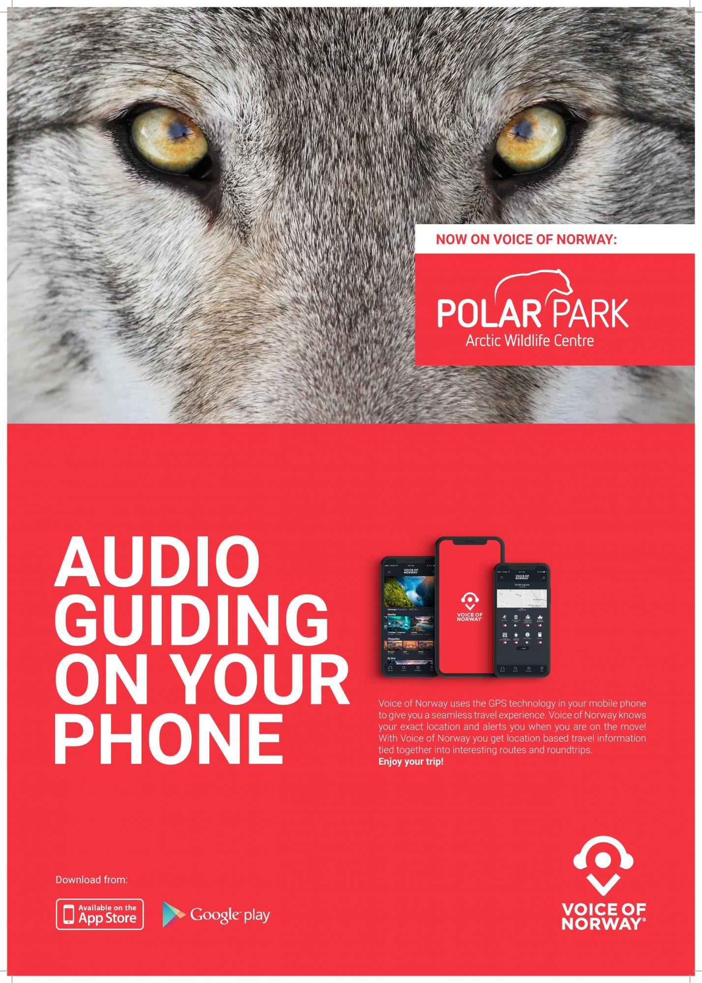 Polar Park Arctic Wildlife Centre Audioguide Lydguide Zoo