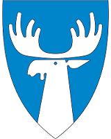 Tynset-kommune-liten
