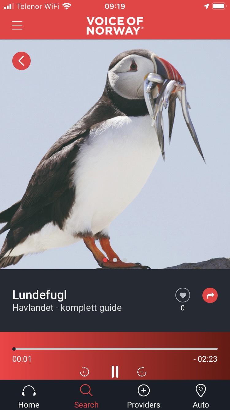 Voice-Of-Norway-lundefugl-audiovisuell-reiseguide-turistguide-app